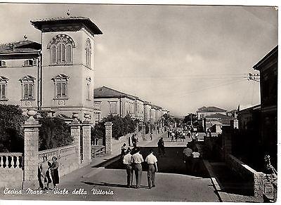 z1572-cecina-mare-viale-della-vittoria-1951