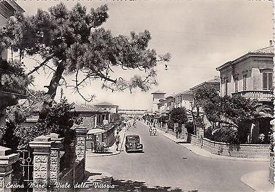 z2573-cecina-mare-viale-della-vittoria-1952